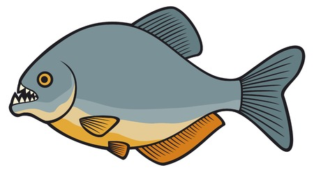 voracious: piranha fish Illustration