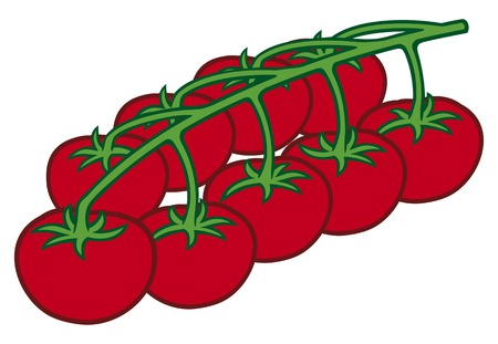 tomatoes: cherry tomatoes on branch Illustration
