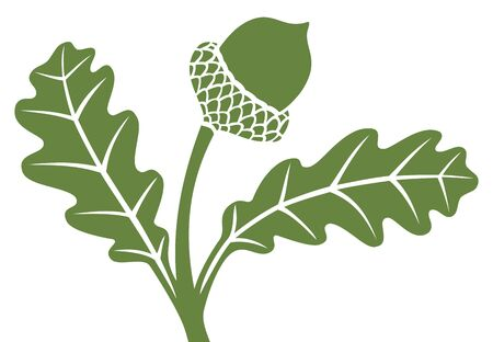 acorn: acorn with leaf Illustration