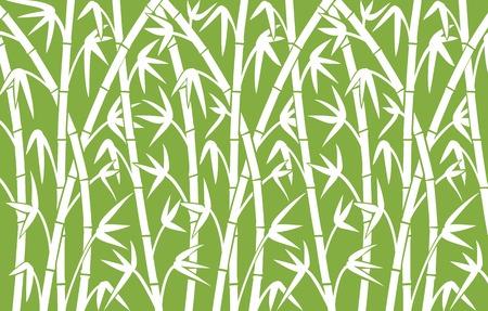 bambu: fondo con bambú tallos verdes ilustración vectorial de bambú,