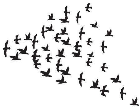 a flock of flying birds silhouette of the birds in flight Stock Illustratie