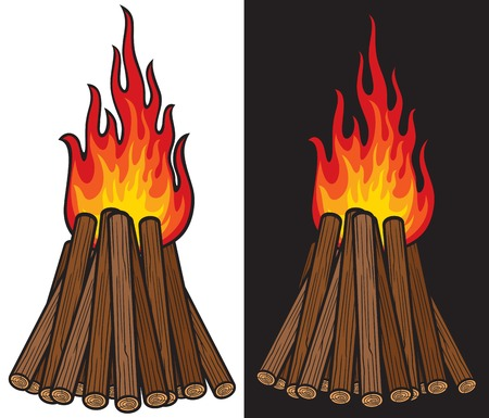 fire wood: big bonfire