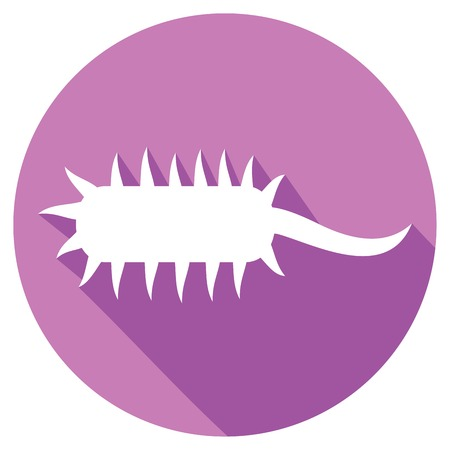 chromosomal: bacterial cell flat icon Illustration