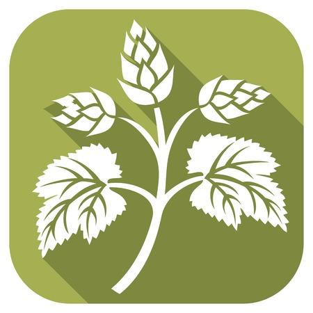 hop plant: hops leaf flat icon (hops plant, hop symbol, hop leaves, hop branch, beer symbol)