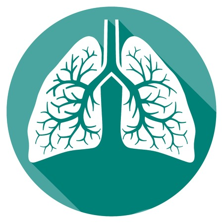 respire: human lungs flat icon