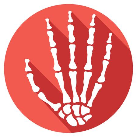 distal: icono de la mano plana esqueleto humano Vectores