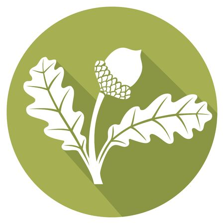 grocers: acorn with leaves flat icon Illustration