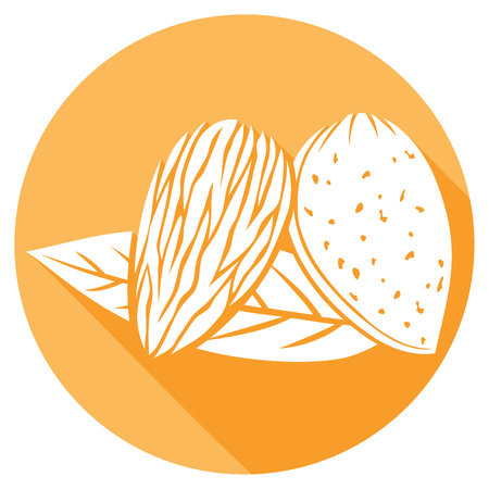 drupe: almond with leaves flat icon (almond nut)
