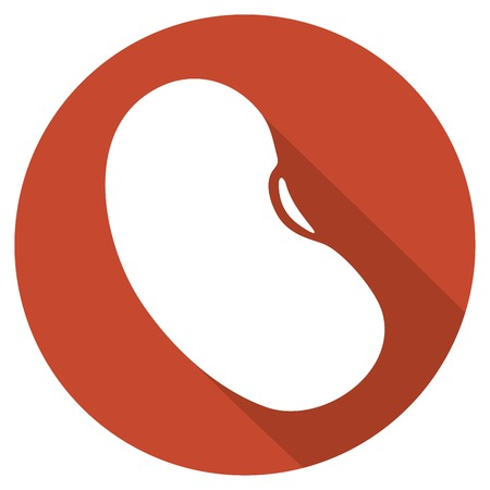 nutritive: bean flat icon