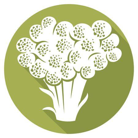 wholesome: broccoli flat icon Illustration
