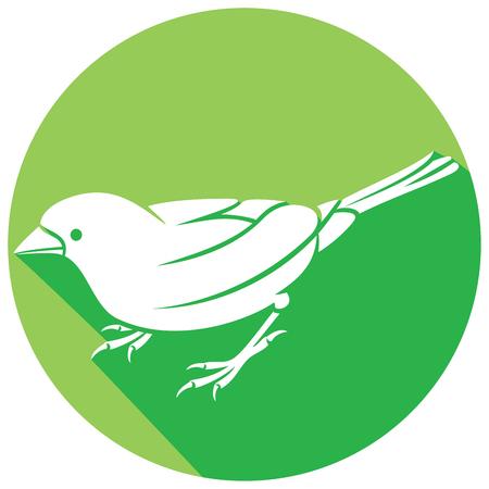 sparrow bird: sparrow - small bird flat icon Illustration