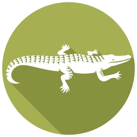 crocodile design flat icon (alligator symbol, crocodile icon) 일러스트