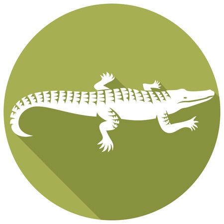 crocodile design flat icon (alligator symbol, crocodile icon) Illusztráció