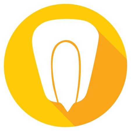the kernel: grain of corn flat icon (kernel corn, corn seed grain)