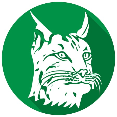 lynx: head of lynx flat icon (bobcat head)