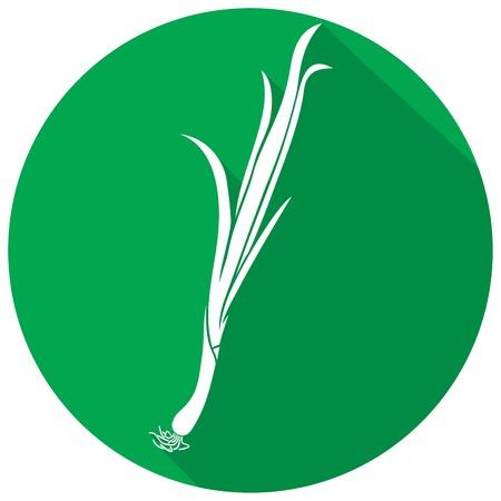 leek: fresh green onion flat icon