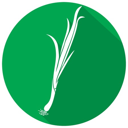 lowbrow: fresh green onion flat icon