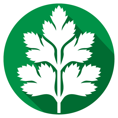 parsley flat icon (parsley symbol, green leaves of parsley)