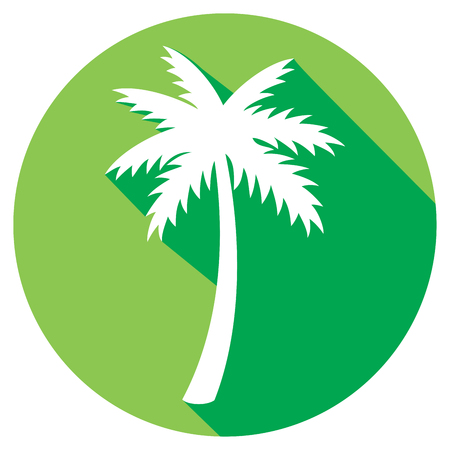 palm oil: palm tree flat icon