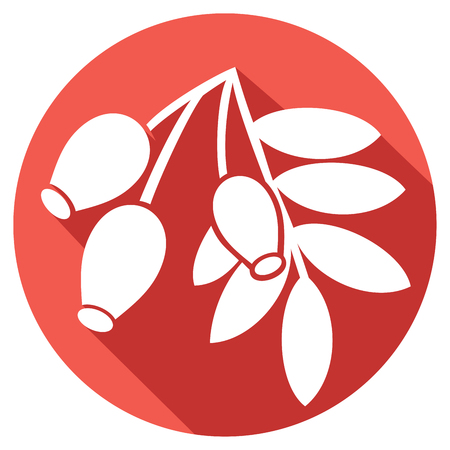 thorn bush: red rose hip with leaves flat icon