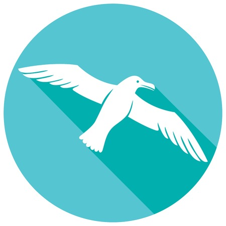 wing span: seagull flat icon Illustration