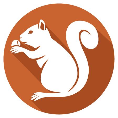 undomesticated: squirrel with hazelnut flat icon (squirrel eating a hazelnut)