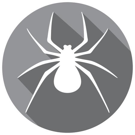 arachnophobia: spider flat icon