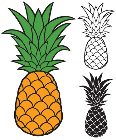 dietary: pineapple vector Illustration