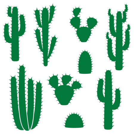 the spikes: A cactus vector collection (set).