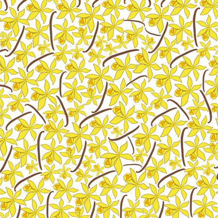 background pattern with vanilla pods and flower