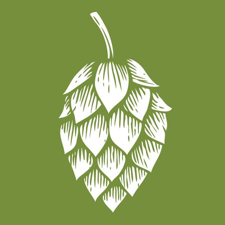 brewery: Hop icon. Illustration