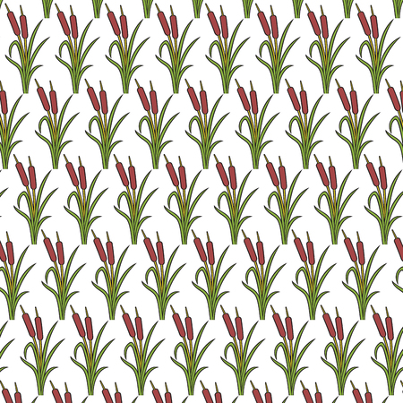 Background pattern with reeds vector illustration (bulrushes and grass).