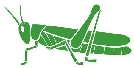 groene sprinkhaan vectorillustratie