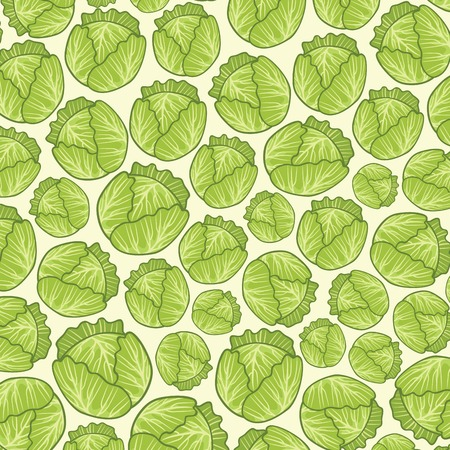 background pattern with green fresh cabbages