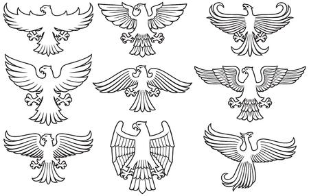 Heraldic eagles thin line icons set. Çizim
