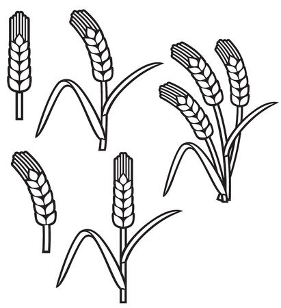 wheat ear thin line icon set Vector illustration.