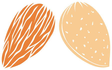 almond icons vector illustration