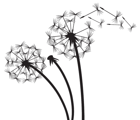 Dandelion in the wind Ilustrace
