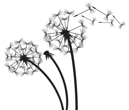 Dandelion in the wind Illustration