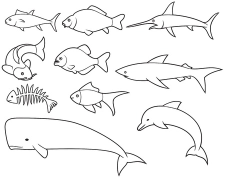 fish thin line icons set (dolphin, bone, carp, shark, whale, swordfish, piranha, tuna)