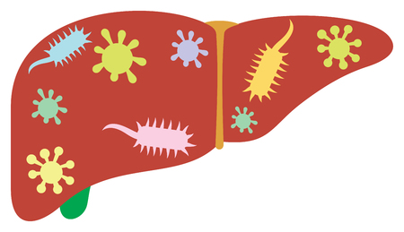 liver with germs and bacteria vector illustration Ilustracja