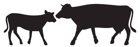 cow and calf vector illustration