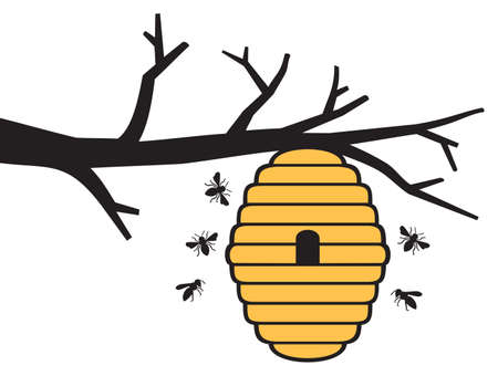Bees and beehive on tree branch. Honey design.