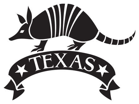 Texas design with armadillo animal and banner