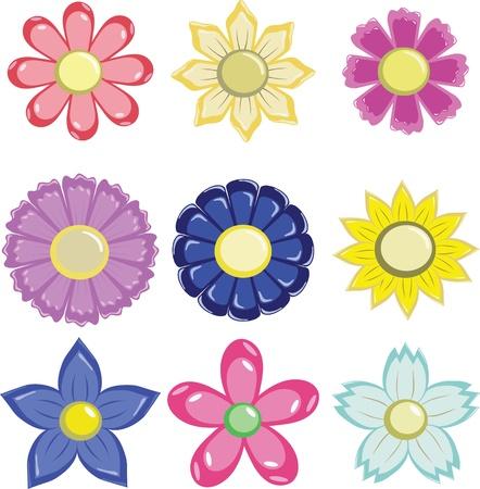 petal: Graphic of flowers in various petal format Illustration