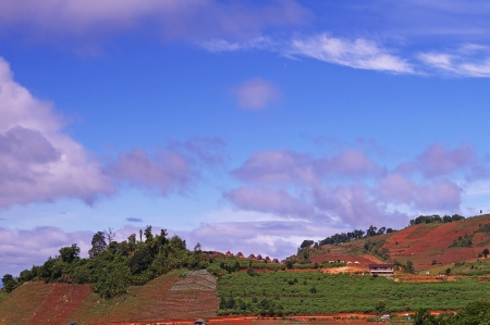 agricultural area: sky with cloud over the agricultural area in Chiang Mai
