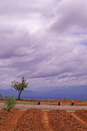 agricultural area: sky with cloud over the agricultural area in Chaing Mai