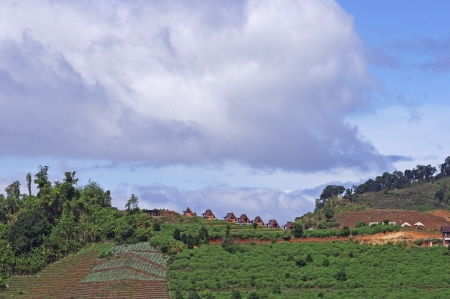 agricultural area: sky scene over the highland agricultural area in Chiang Mai