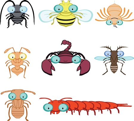 arthropod: Graphic insects and arthropod include cockroach fly spider ant scorpion mosquito termite centipede