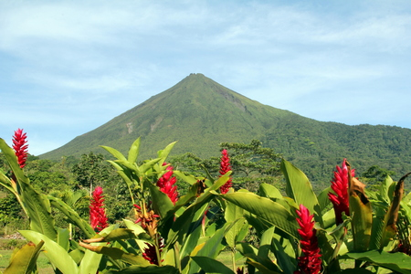 volcanos: Arenal Volcano in Costa Rica with Red Flowers